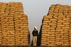 A watchman stands next to heaps of sacks filled with paddy at a wholesale grain market in the northern Indian city of Chandigarh
